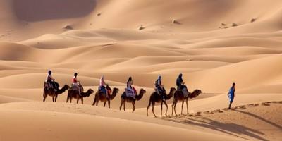 tour por Desierto