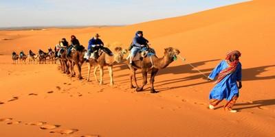 Desert trips from Fes
