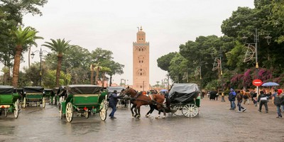 Fes to Marrakech desert tours